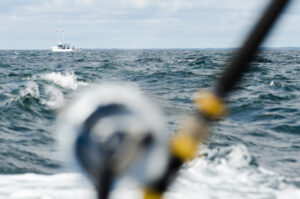 PEI Fishing Charters