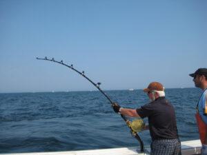 PEI Tuna Fish
