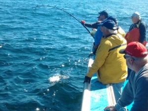 tuna-fishing-2014-141_orig