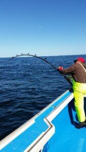 tuna-fishing-2014-146_orig
