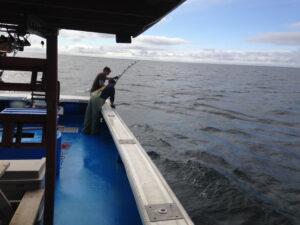 tuna-fishing-2014-40_orig