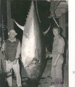tuna-pics-004_orig